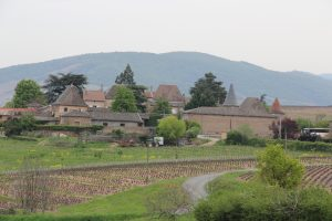 Balade au coeur du Beaujolais vert planning de balades