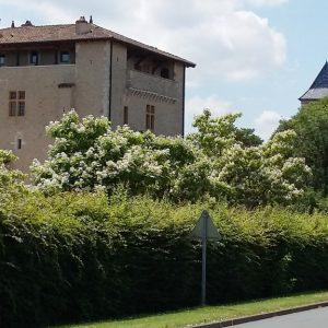 Balade Saint-Bernard-départ Trévoux