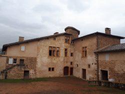 Une histoire de vin depuis depuis 1251